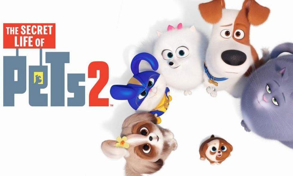 The Secret Life of Pets 2 Amazon Prime Video