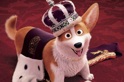 the queens corgi amazon prime video