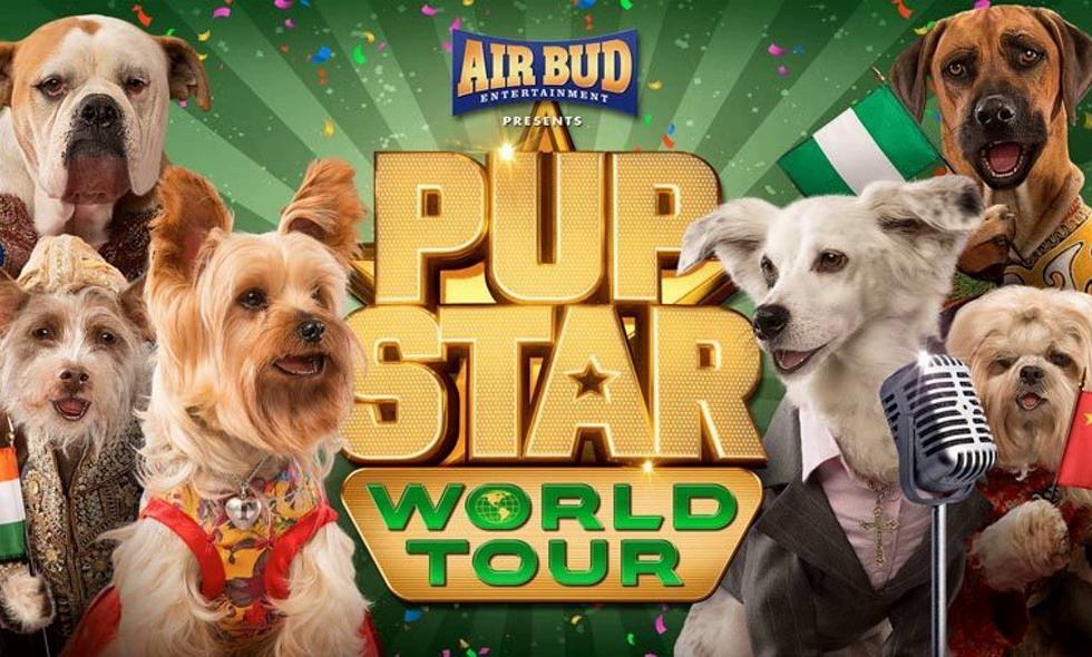 pup star world tour amazon prime video